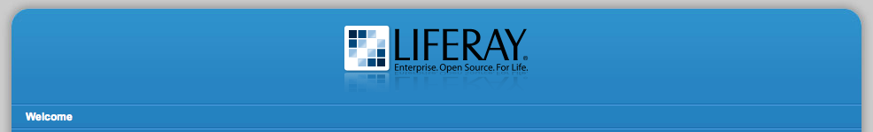 Figure 13.15: Envision Theme from Liferays Theme Repository