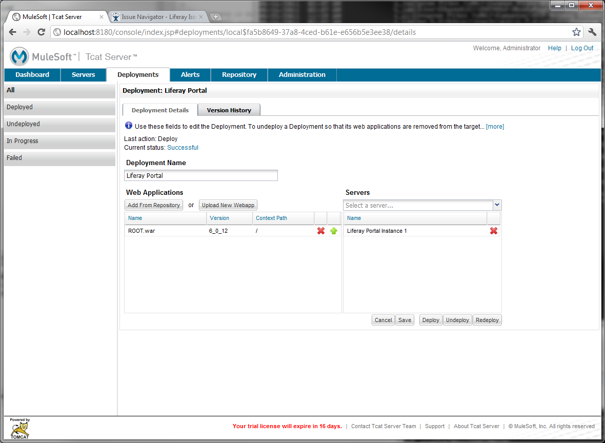 Figure 14.34: Completing Liferay Portal deployment