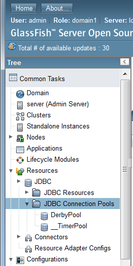 Figure 14.37: Navigate to JDBC Connection Pools