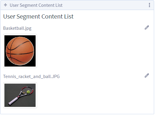 Figure 3: The User Segment Content List application displays content that matches the user segments which fit the current user. You can configure the User Segment Content List application to display assets of any kind or only specific kinds of assets.