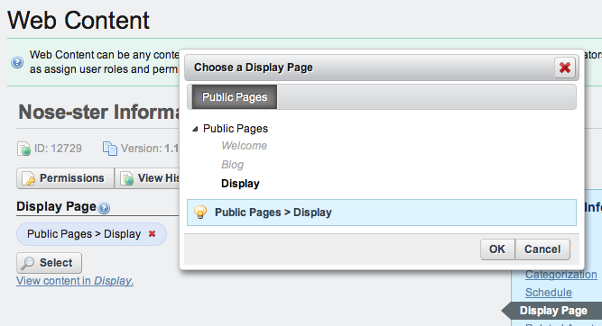 Figure 5.15: Selecting a Display Page