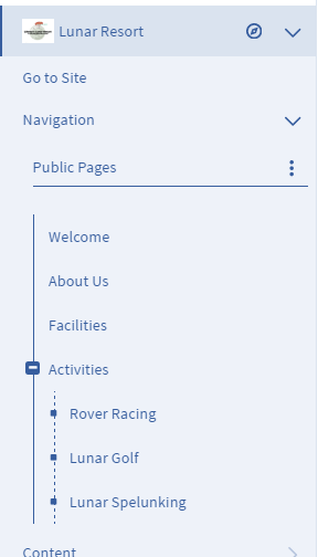 Figure 1: The Pages menu allows you to edit your site pages as a whole.