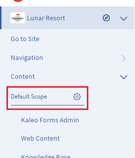 Figure 1: When defining a page scope for an app, the Menu provides a Default Scope dropdown.