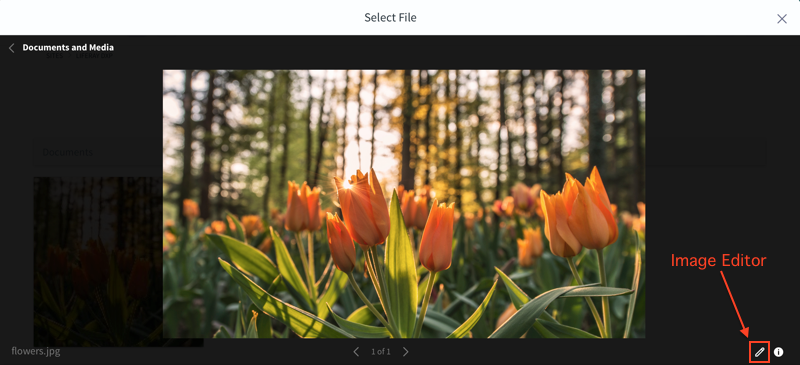 Figure 1: You can access the image editor through the item selector window.
