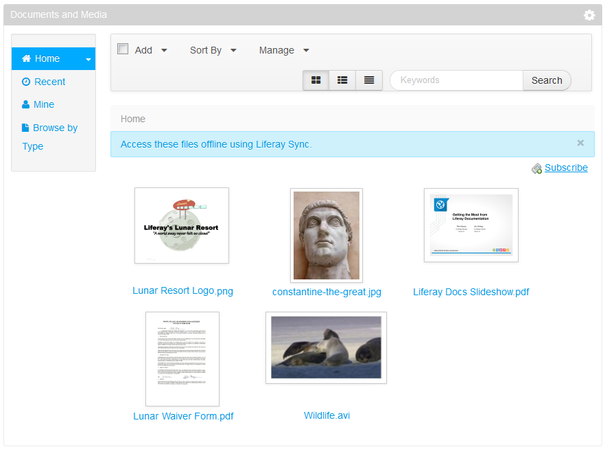 Figure 5.7: After configuring additional tools, previews in the Documents and Media portlet are more advanced.