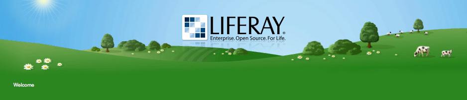 Figure 15.16: Murali Theme from Liferays Theme Repository