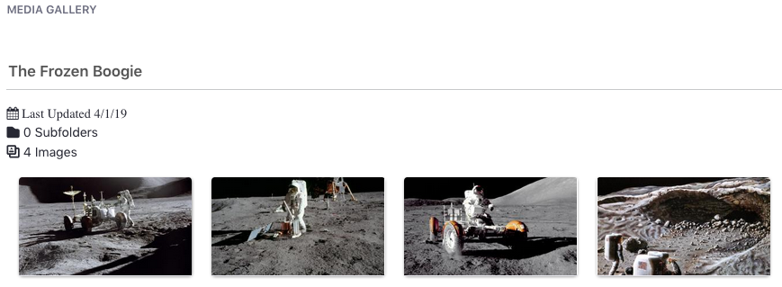 Figure 2: The Media Gallery renders large thumbnail images of media files.