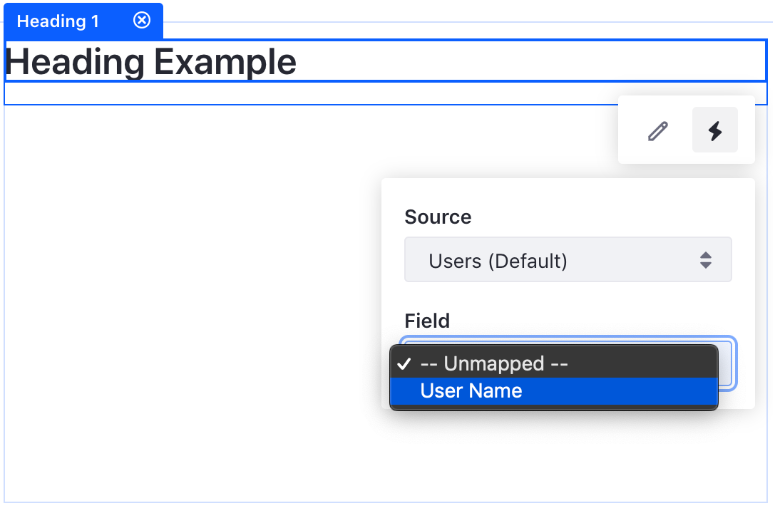 Figure 1: After creating the *InfoDisplayContributorField class, your custom content type has a new field to map.